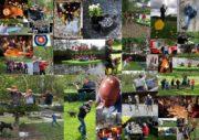 Ardennen Collage Algemeen